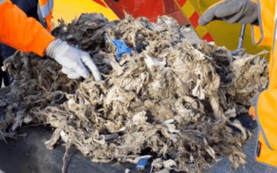 ASA bans Andrex wet wipe flushable advert as misleading